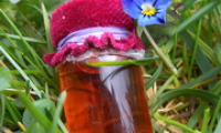 Настойка прополиса — применение и лечение