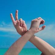 жесты рук