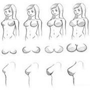 Типы женской груди